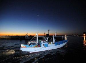 しらす漁 船