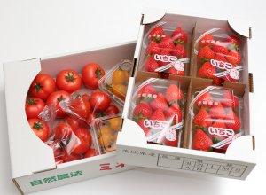 柳田農園のトマトとイチゴ