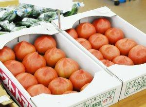 ファーマーズマーケット きらいち筑西店 トマト