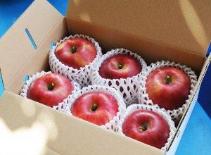 奥久慈りんご園のりんご