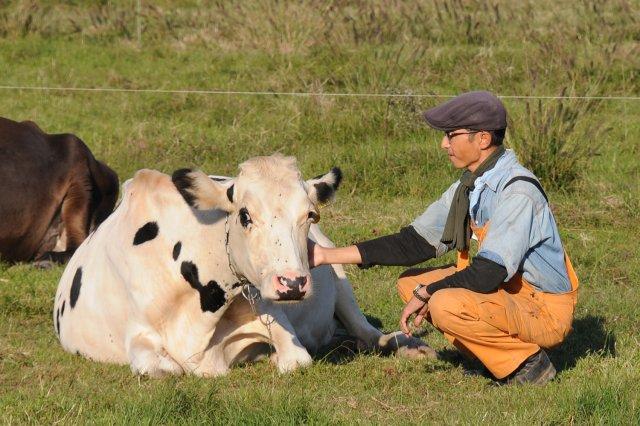 牛と上野さん