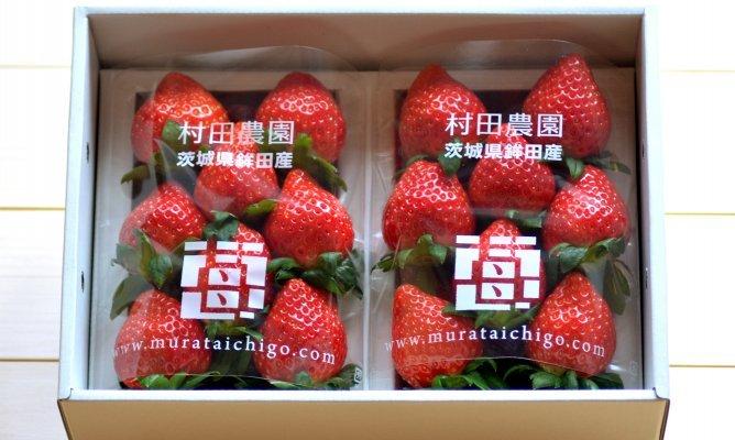 第86回茨城をたべよう連動プレゼント企画【村田農園のイチゴ】