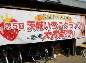 いちごグランプリ大賞受賞横断幕