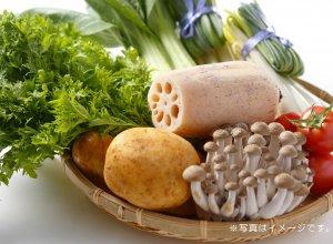 彩り野菜BOXイメージ