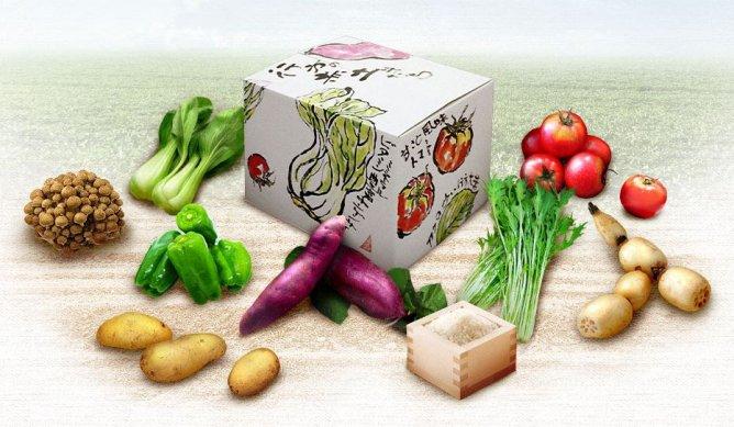 第88回茨城をたべよう連動プレゼント企画 JAなめがたしおさい【彩り野菜BOX】