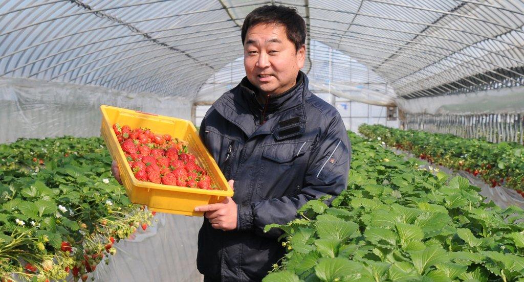 農業法人有限会社 大地 吉原 将成さん(常総市)