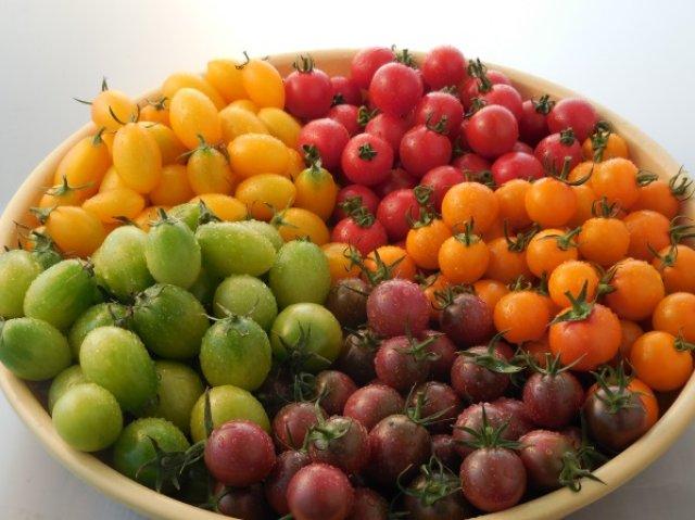 5種類のカラフルなミニトマト