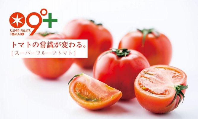 第423回プレゼント企画 大玉で高糖度!【スーパーフルーツトマト】