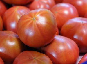 スーパーフルーツトマト てるて姫