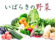 【特集】野菜王国!いばらきの野菜