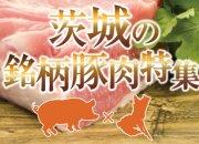 茨城の銘柄豚肉特集!!