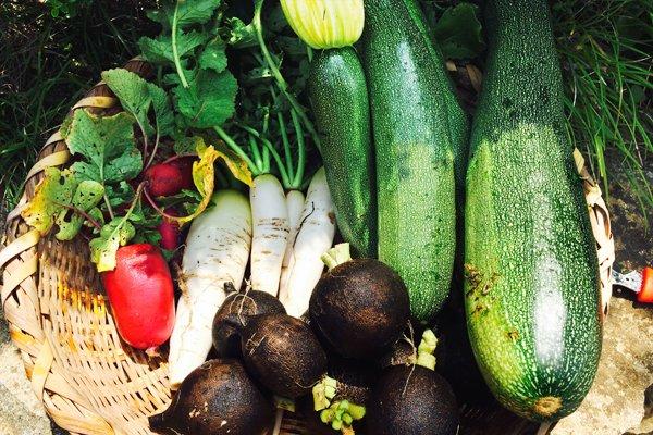 オー・ボン・ヴィヴェール 野菜イメージ