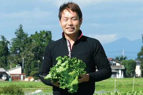 おいしいレタスを作りたい! )