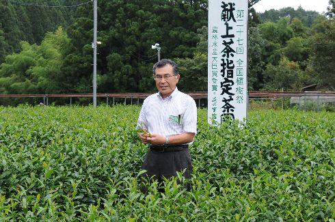 急須でいれるお茶の再興を願って!)