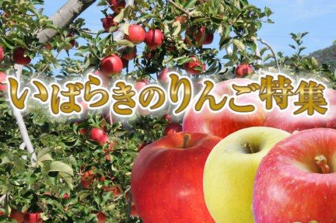 いばらきのりんご特集)