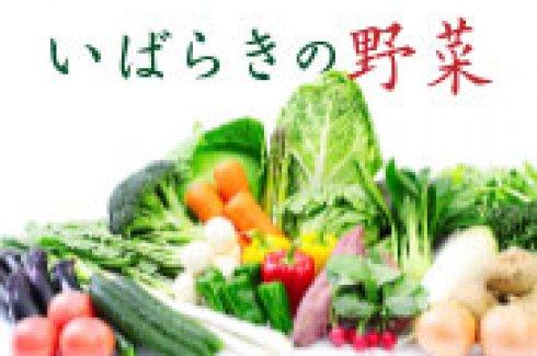【特集】野菜王国!いばらきの野菜)