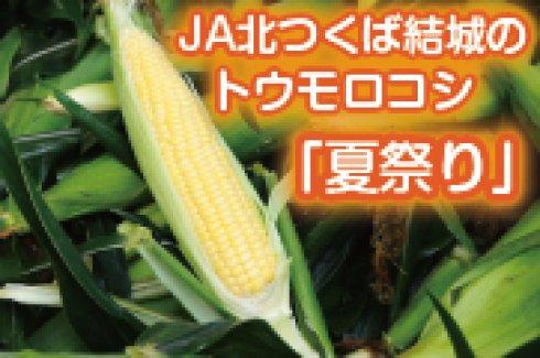 特集 トウモロコシ「夏祭り」)