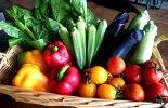 SNAPPY使用野菜イメージ