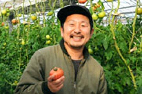進化し続けるトマト作り)