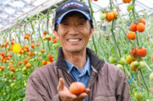 安全・安心・信頼を得るトマトを作る!)