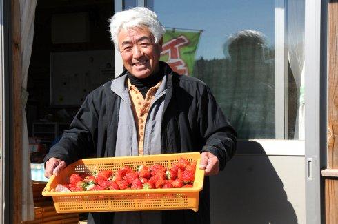 茨城いちごグランプリ 大賞受賞!)