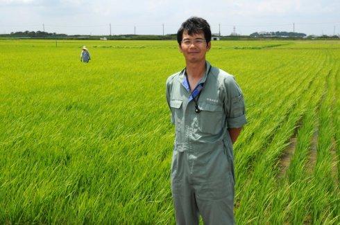 (有)横田農場)