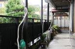 割烹 川広 和茶屋Wawawa 入り口