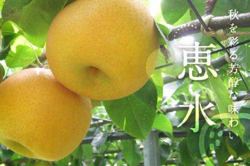 秋を彩る芳醇な味わい「恵水」)